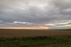 Mooie zonsondergang op een gebied buiten de stad Stock Foto