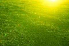 Mooie zonsondergang op groene gebied en heuvel De zomer of de lenteweideaard Stock Afbeelding