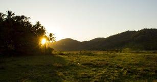 Mooie zonsondergang op het gebied van Goa, India Royalty-vrije Stock Fotografie