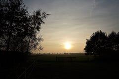 Mooie zonsondergang op het platteland in Drenthe Holland royalty-vrije stock foto's