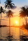 Mooie zonsondergang op overzees strand met palm nave Stock Afbeeldingen