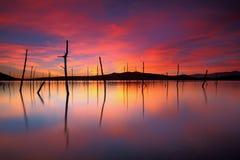 Mooie zonsondergang over een peacefullmeer Stock Foto