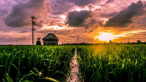 Mooie zonsondergang over Greenfield Stock Fotografie