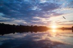 Mooie zonsondergang over het meer met vogel in de hemel stock foto