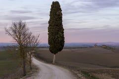 Mooie zonsondergang over het Toscaanse platteland in het Ville di Corsano-gebied, Siena, Italië royalty-vrije stock afbeelding