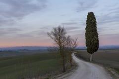 Mooie zonsondergang over het Toscaanse platteland in het Ville di Corsano-gebied, Siena, Italië stock foto