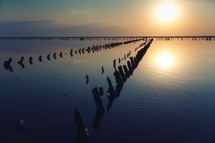 Mooie zonsondergang over meer met houten stapels van zoute installatie royalty-vrije stock foto's