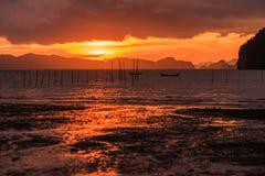 Mooie zonsondergang van de zeekust en de mangrove stock fotografie