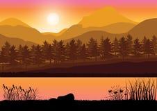 Mooie zonsondergang, Vectorillustratieslandschap Royalty-vrije Stock Fotografie
