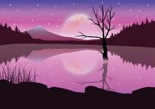 Mooie zonsondergang, Vectorillustratieslandschap Stock Fotografie