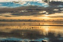 Mooie zonsopgang in het Eiland van Zanzibar Royalty-vrije Stock Afbeeldingen