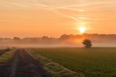 Mooie zonsopgang op een rode hemel, die de wereld awaking stock foto