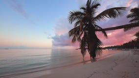 Mooie zonsopgang over exotisch strand op Caraïbisch eiland Tropische overzeese golven onder de blauwe hemel stock footage