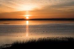 Mooie zonsopgang over het meer van het land Royalty-vrije Stock Foto's