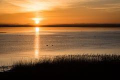 Mooie zonsopgang over het meer van het land Royalty-vrije Stock Afbeeldingen