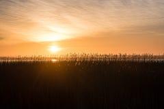 Mooie zonsopgang over het meer van het land Royalty-vrije Stock Foto