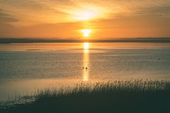 mooie zonsopgang over het meer van het land - uitstekende groen ziet eruit royalty-vrije stock afbeeldingen