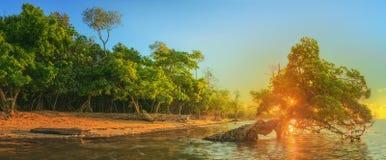 Mooie zonsopgang over het tropische strand, Thailand Royalty-vrije Stock Afbeelding