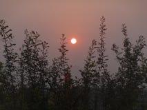Mooie zonsopgang tijdens prettige de zomerochtend royalty-vrije stock foto