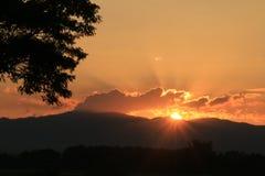 Mooie Zonstijging en zon vastgestelde achtergrond met zwarte gesilhouetteerde bomen met oranje hemel Royalty-vrije Stock Foto's