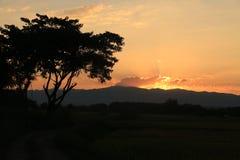 Mooie Zonstijging en zon vastgestelde achtergrond met zwarte gesilhouetteerde bomen met oranje hemel Stock Foto
