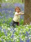 Mooie Zuigeling in Bloemen Stock Afbeelding