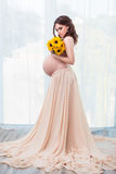 Mooie zwanger Royalty-vrije Stock Fotografie