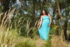 Mooie zwangere vrouw in openlucht stock foto's