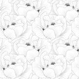 Mooie zwart-wit, zwart-witte naadloze achtergrond met arborea van Paeonia van de bloemeninstallatie (Boompioen) Royalty-vrije Stock Afbeelding