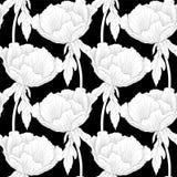 Mooie zwart-wit, zwart-witte naadloze achtergrond met arborea van Paeonia van de bloemeninstallatie (Boompioen) met stam en blade Stock Afbeelding