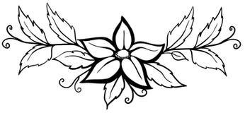 Zwart-witte abstracte bloem. Met bladeren en bloeit. Geïsoleerde op wit Stock Foto