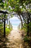 Mooloolaba di accesso della spiaggia Immagine Stock