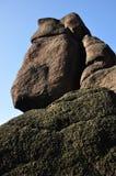 Moomin Fotografia Royalty Free