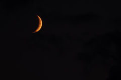 moon Arkivfoto