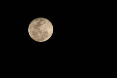 Moon. Full Moon Royalty Free Stock Photography