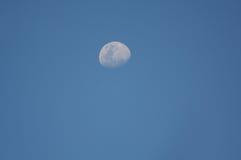 moon arkivfoton
