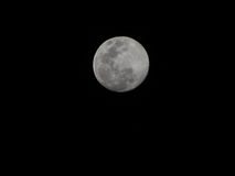 Moon Stock Images