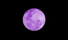Moon. Isolated moon on a black sky royalty free stock images