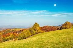 Moon above autumn landscape with grassy meadow. Autumn landscape with grassy meadow and row of trees in autumn foliage. mountain ridge in the distance. full moon stock photos