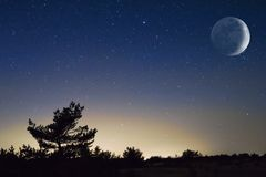Moon above a night steppe Royalty Free Stock Photos