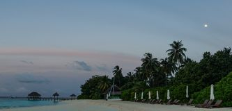 Moon above palm trees in Maldives. royalty free stock photos
