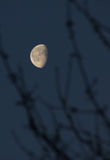 Moon on a background sky Royalty Free Stock Photography