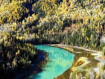 Moon Bay del lago Kanas in autunno Fotografia Stock Libera da Diritti