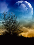 Moon Stock Photography