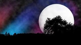 Moon behind tree stock photography