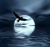Moon and bird stock illustration