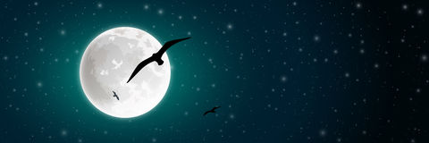 Moon and Bird Stock Photo