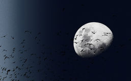 Moon and birds Royalty Free Stock Photo
