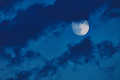 Moon in the blue summer sky. Moon in the cloudy blue summer  sky Stock Image