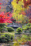 Moon Bridge in the Japanese Gardens Royalty Free Stock Photos